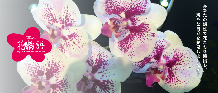 あなたの感性で花たちを演出し、新たな自分を発見しませんか?